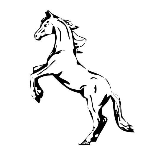 pratique de l'équitation à L'Étang-Salé (974) | Asea des Alizés